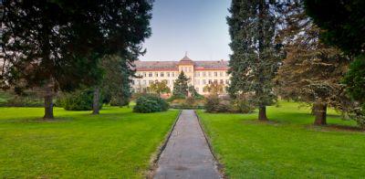 Posílit řady dobrovolníků a zpříjemnit letní čas pacientů mohou noví zájemci v Nemocnici Český Těšín